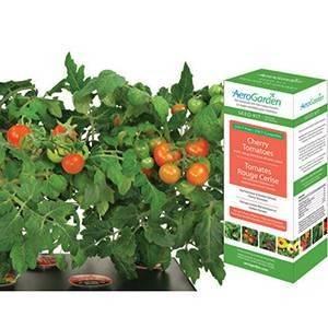 AeroGarden 7-Pod Cherry Tomato Seed Kit